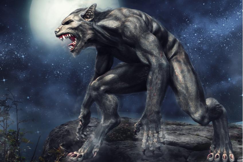 vlkodlak vlk
